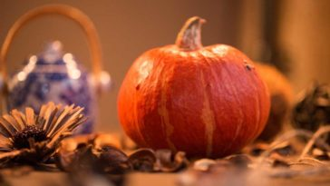Pumpkin sitting on table in autumn setting